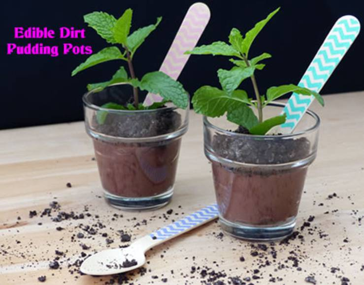edible no bake pudding flower pots
