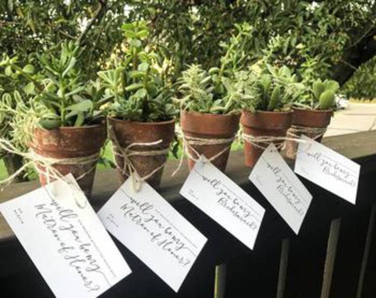 Succulent Bridesmaid Proposal Idea