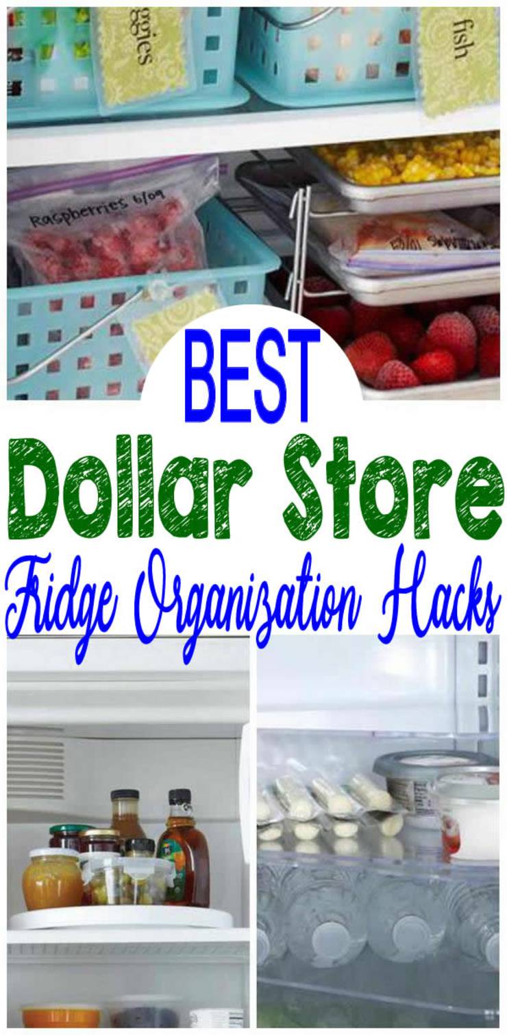 Dollar-Store-Fridge-Organization-and-Hacks
