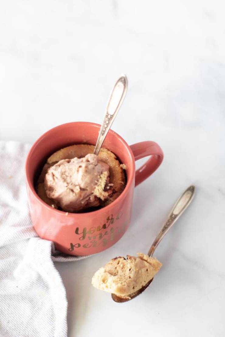 Best Keto Mug Cakes Low Carb Keto Microwave Peanut Butter Chocolate Chip Mug Cake Idea Quick Easy Ketogenic Diet Recipe Completely Keto Friendly
