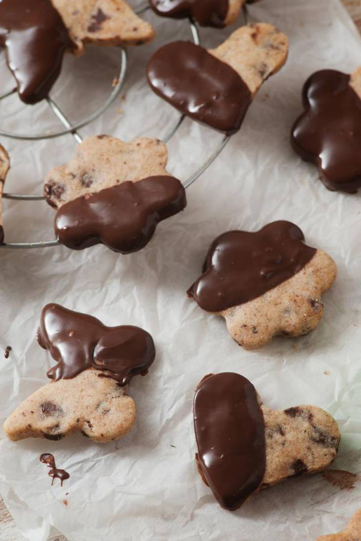 BEST Keto Cookies! Low Carb Keto Chocolate Chip Shortbread Cookies Cookie Idea – Quick & Easy Ketogenic Diet Recipe – Completely Keto Friendly