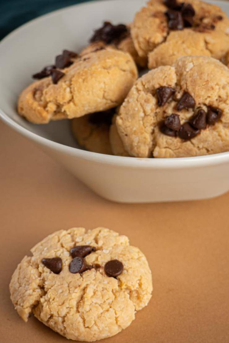 BEST Keto Cookies! Low Carb Keto Peanut Butter Chocolate Chip Cookie Idea – Quick & Easy Ketogenic Diet Recipe – Completely Keto Friendly