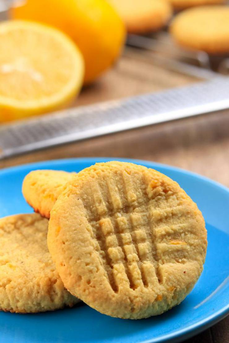 BEST Keto Cookies! Low Carb 3 Ingredient Lemon Cookie Idea – Quick & Easy Ketogenic Diet Recipe – Completely Keto Friendly