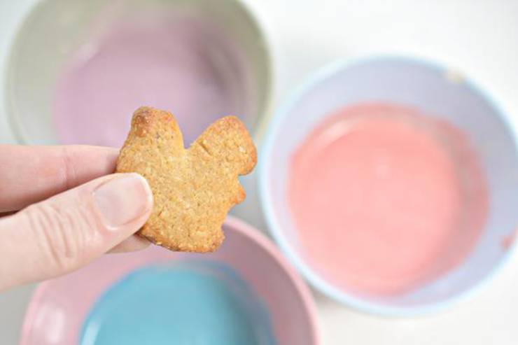 Keto Animal Cookies