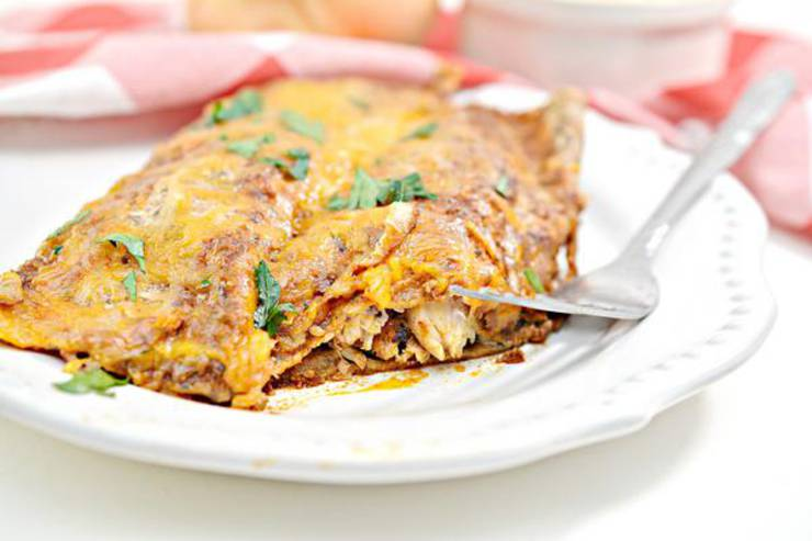 Keto Chicken Enchiladas – EASY Low Carb Chicken Enchiladas Recipe – BEST Dinner – Lunch – Appetizer Idea