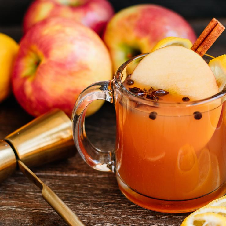 Alcoholic Drinks – BEST Apple Cider Hot Toddy Recipe – Easy and Simple Fall Cocktail Alcohol Drinks