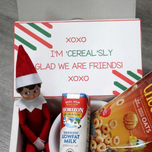 BEST Elf On The Shelf Ideas! Cereal Idea - Dollar Tree Ideas For Kids That Are Easy – Funny – Awesome – Creative – Arrival Ideas Too!