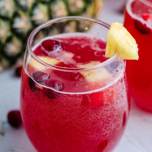 Alcoholic Drinks – BEST Sparkling Cranberry Party Punch Recipe – Easy and Simple Champagne Alcoholic Drinks